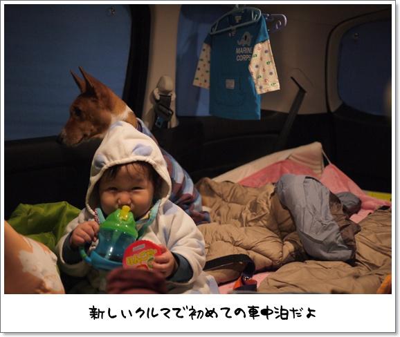 01デビュー戦.jpg