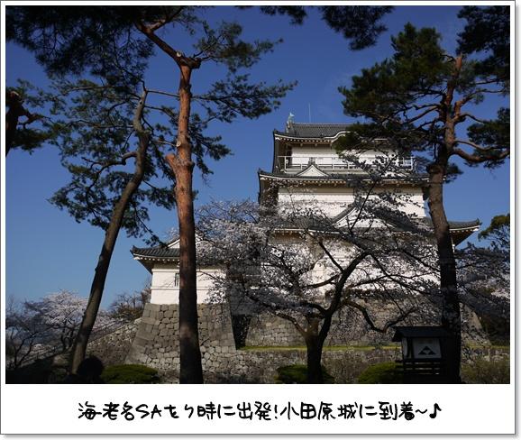 03デビュー戦.jpg