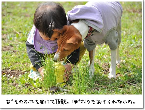 24デビュー戦.jpg