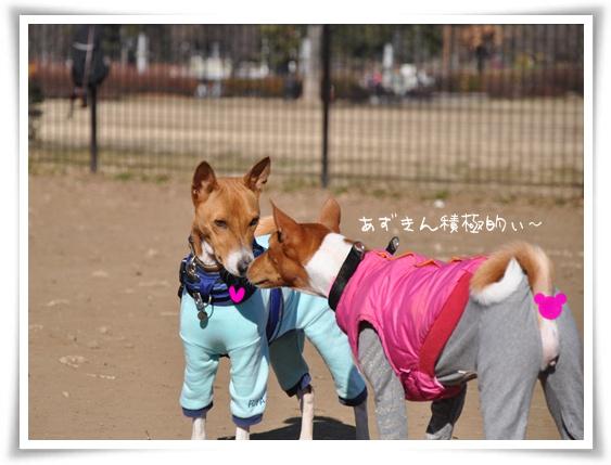 あらいいかんじじゃない?.jpg