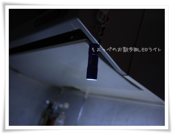 お散歩ライト活躍中.jpg
