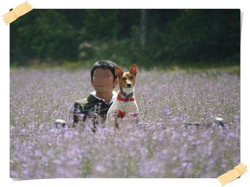 お花畑の男子と女子.jpg