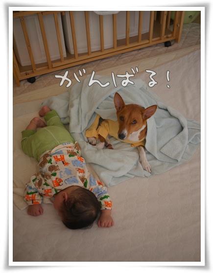 がんばる!.jpg