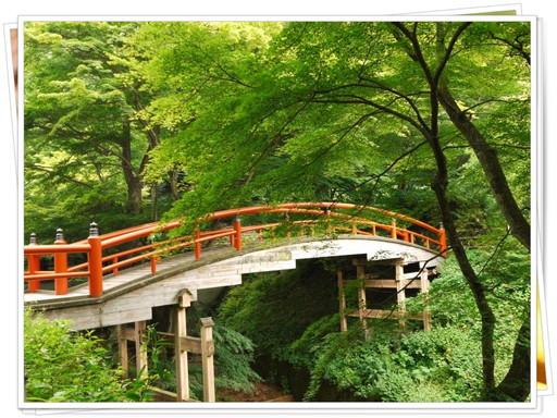 ステキな橋.jpg