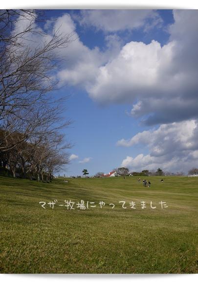 マザー牧場.jpg