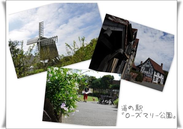 ローズマリー公園1.jpg