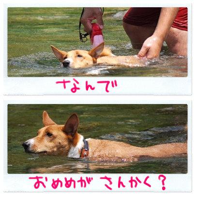 三角のおめめ.jpg