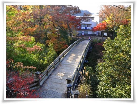 俯瞰猿橋-R.jpg