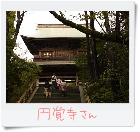円覚寺さん.jpg