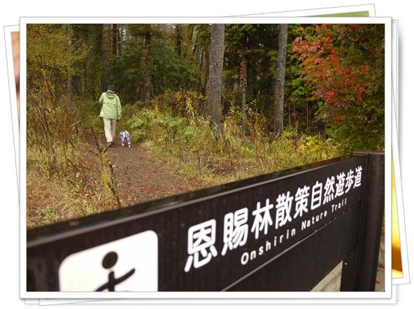 富士吉田の散歩道.jpg