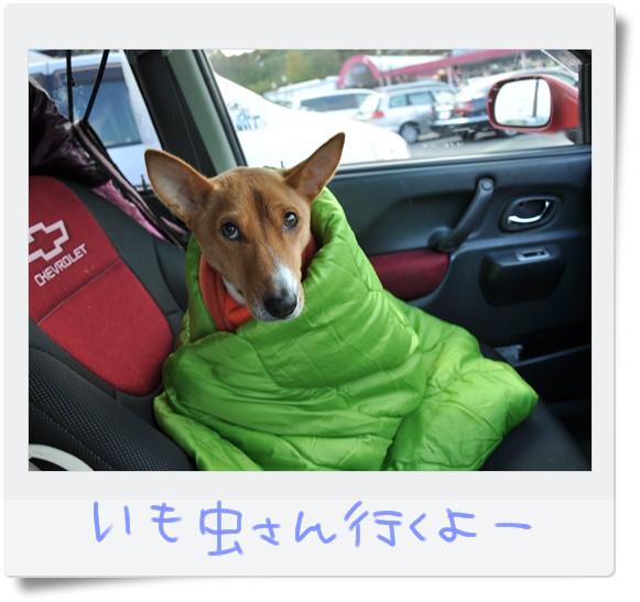 寒いし眠いし-R.jpg