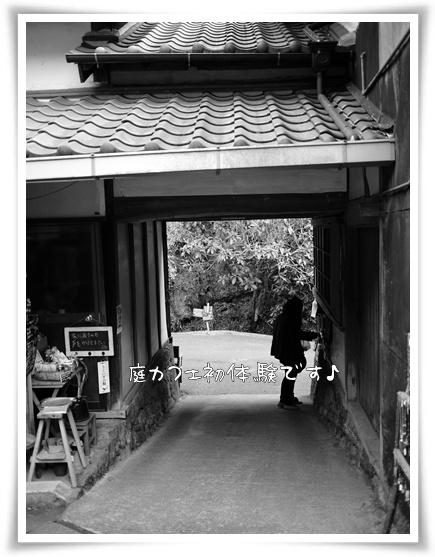 庭カフェ.jpg