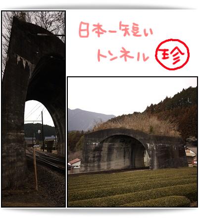 日本一短いトンネル.jpg