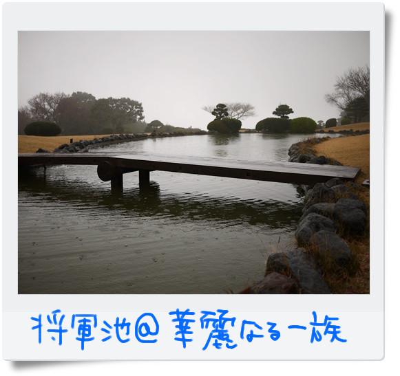 日本平H2.jpg