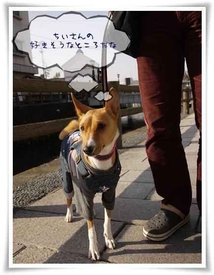 栃木にやってきましたよ.jpg
