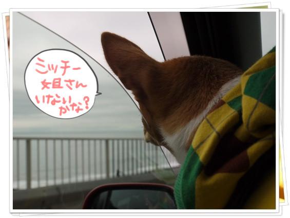 江ノ島の風.jpg