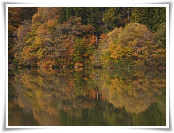 湖面に写る.jpg