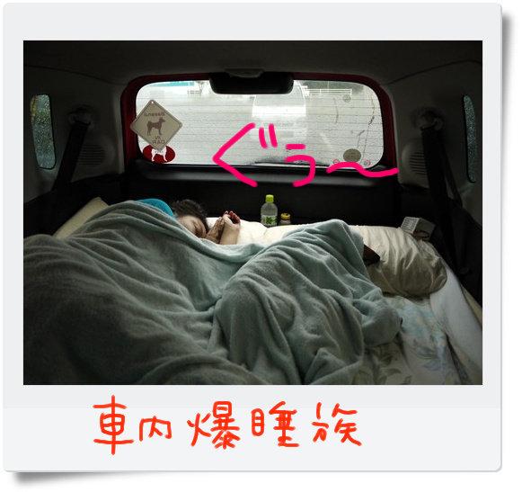 熟睡の犬と飼い主.jpg