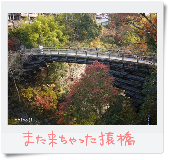 猿橋猿橋♪.jpg