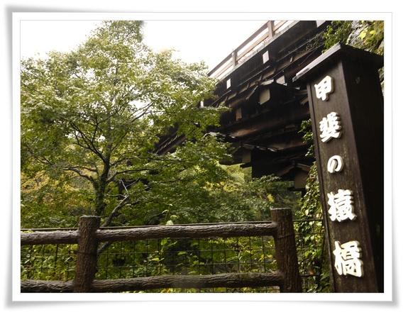 甲斐の猿橋.jpg