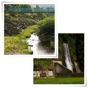 疏水の滝.jpg