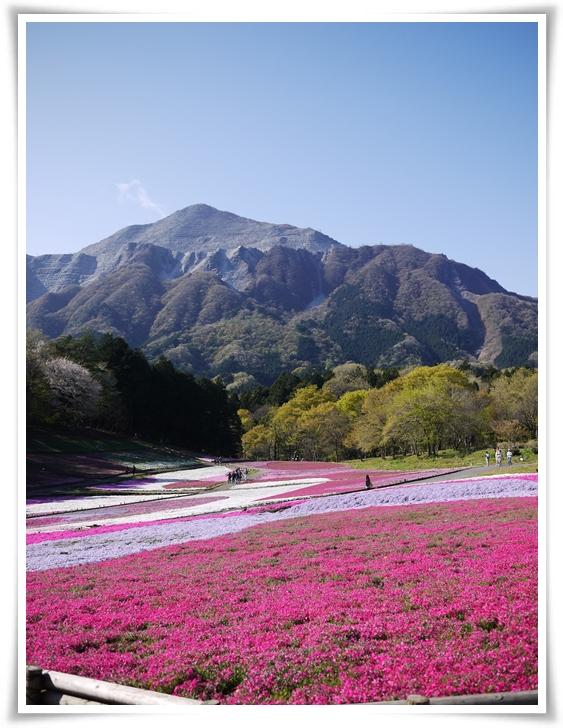 秩父のシンボル武甲山.jpg