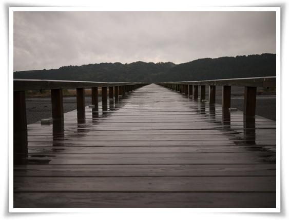 蓬莱橋橋面.jpg