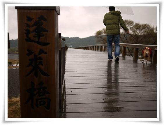 蓬莱橋1.jpg