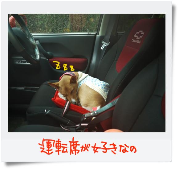 運転席が好きです.jpg