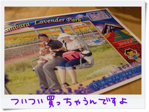 1000円写真.jpg