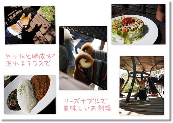 cafeK2.jpg