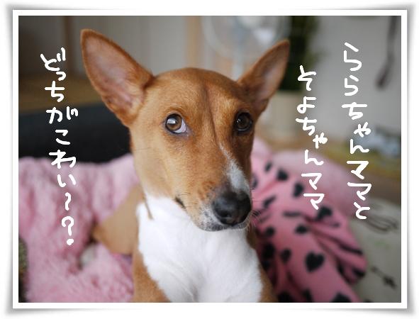 どっちがこわい?.jpg