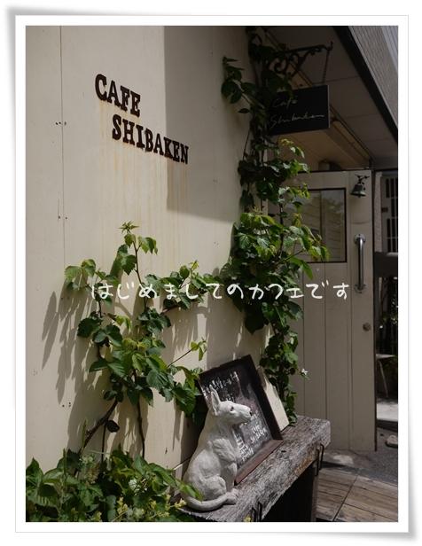 カフェ柴犬2.jpg