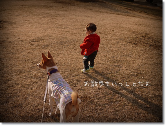 一緒にお散歩.jpg