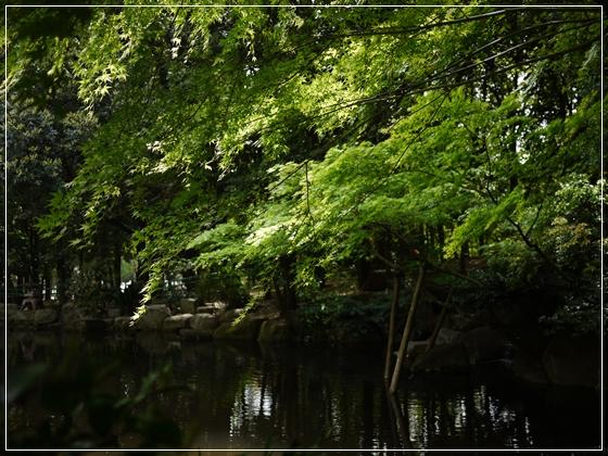 初めての公園2.jpg