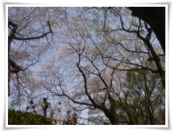 多摩川台公園.jpg