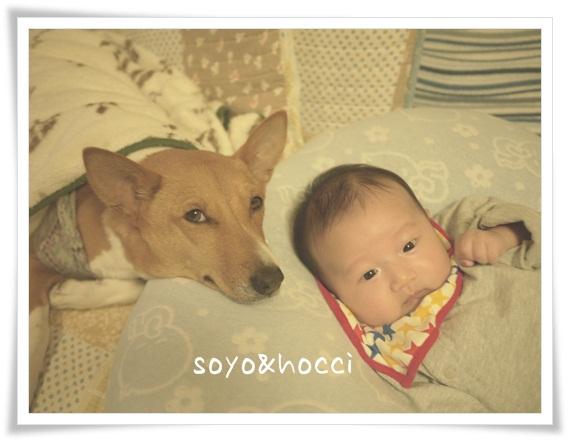 soyo&hocchi.jpg