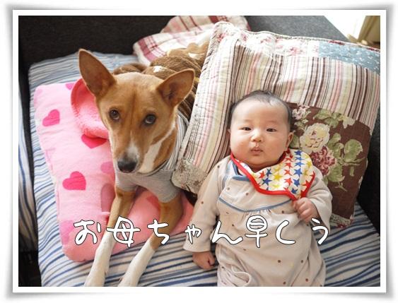 soyo&hocchi2.jpg